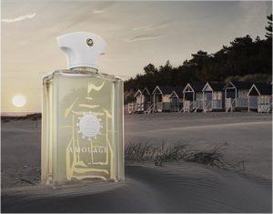 ünlü erkek parfümleri