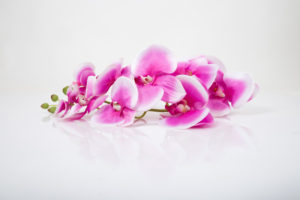 kız arkadaşa hediye çiçek